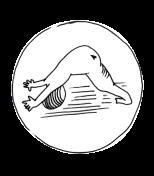 small icon1